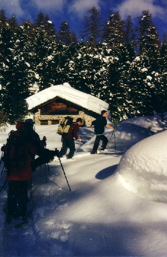Quattro escursionisti immersi nella neve